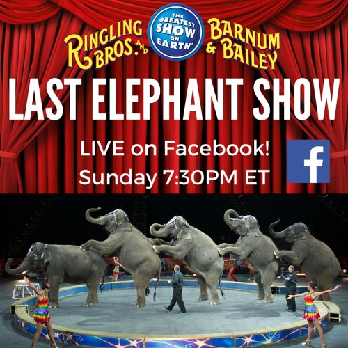 News: Streaming Worldwide Tonight: Ringling Bros. Final Elephant Performance!