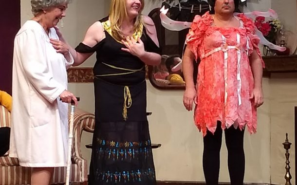 Theatre Review: 'Leading Ladies' at Salem Players