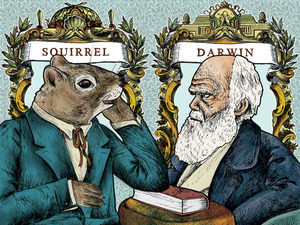 Fringe Review: Squirrel or The Origin of a Species