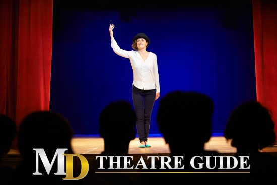 Arts Organizations: Post Your Auditions, Arts Education Notices, and Arts Jobs on MD Theatre Guide