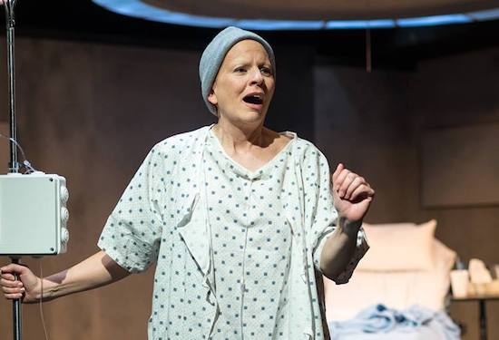 Theatre Review: 'Wit' at Silver Spring Stage